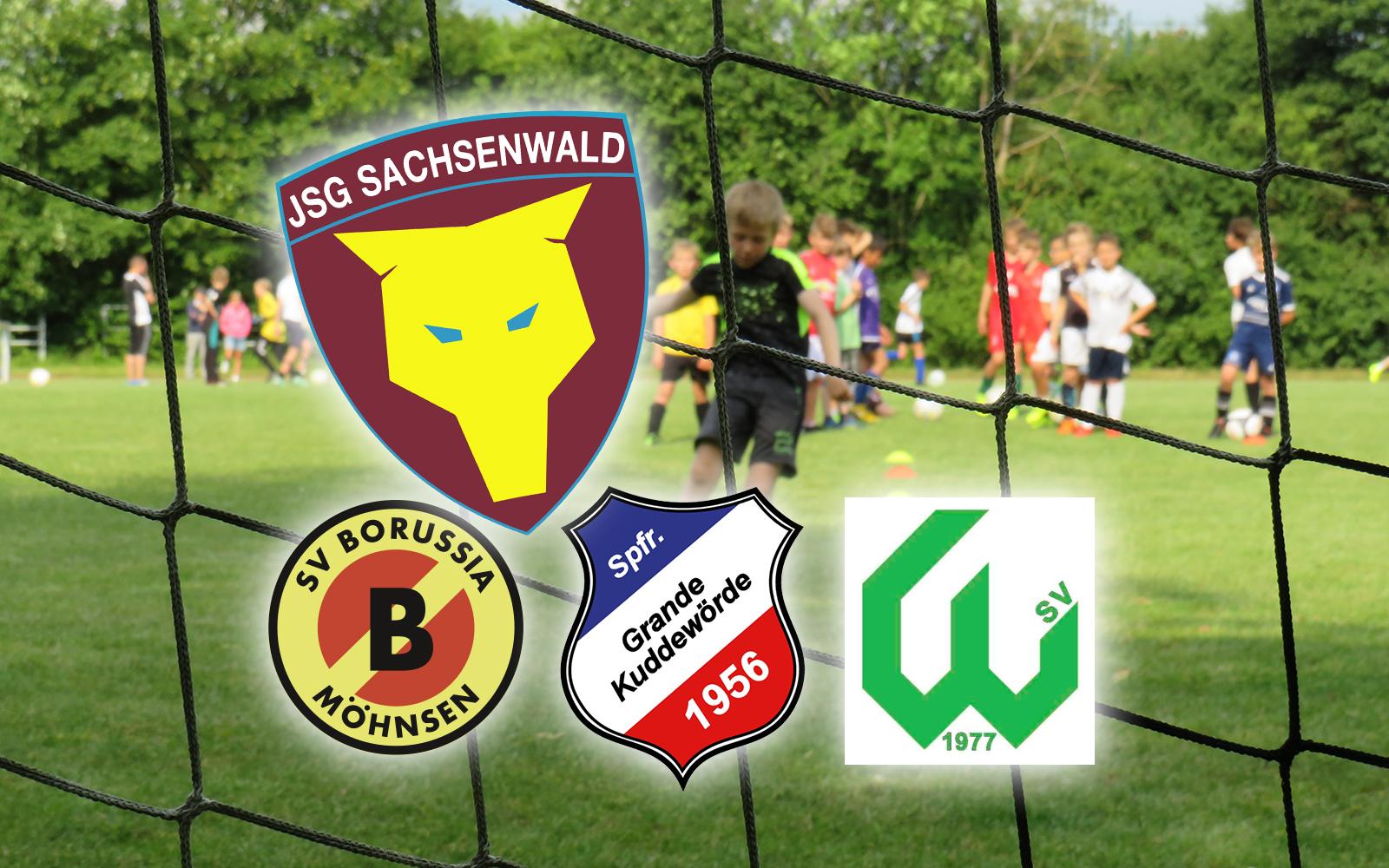 Witzhaver SV Sportfreunde Grande Kuddewörde Borussia Möhnsen zusammen als JSG Sachsenwald